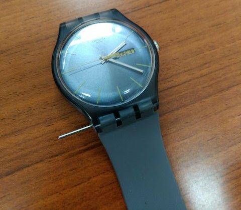 myswatch-pole